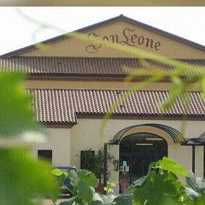 Tenuta San Leone
