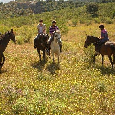 Ruta con los mejores caballos y auténticos profesionales.