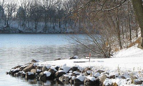 Winter at Slyvania Park