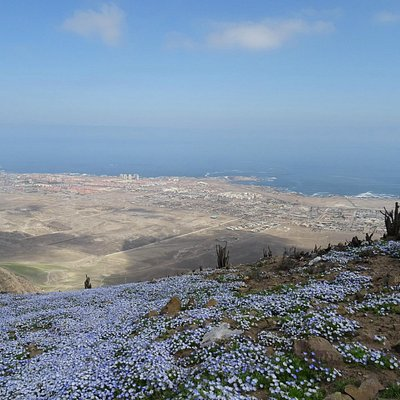 Vista de Antofagasta desde la cima