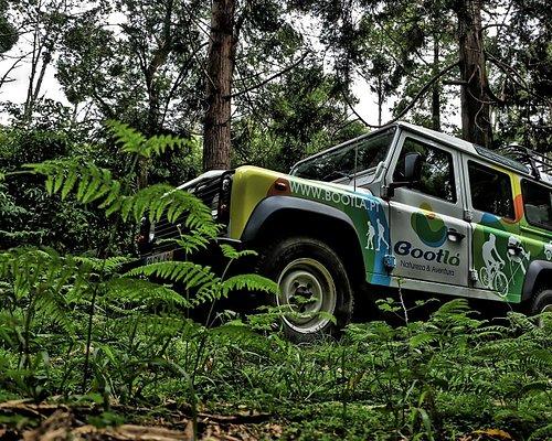 Jipe Safari