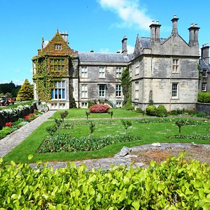 The house and gardens