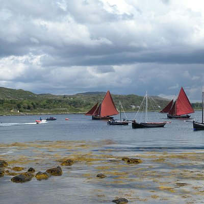 Galway Hookers under full sail
