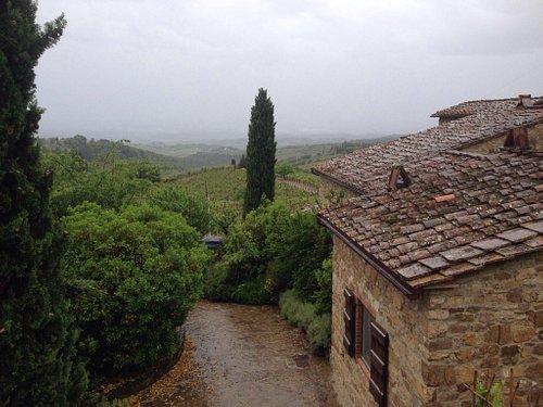 Good wines got a rainy day