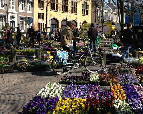 Bloemenmarkt Janskerkhof Utrecht