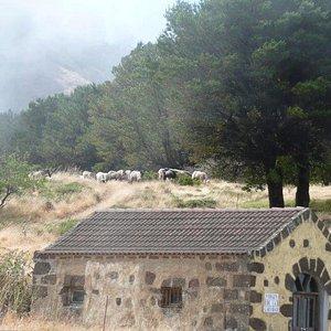 Kleine Kapelle beim Mirador