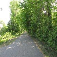 Nice open trail!