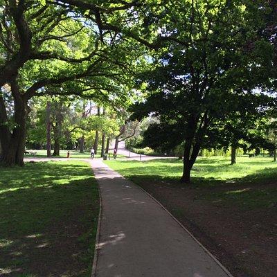 Near Barn Park gate