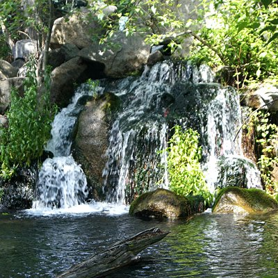 A waterfall on the stream