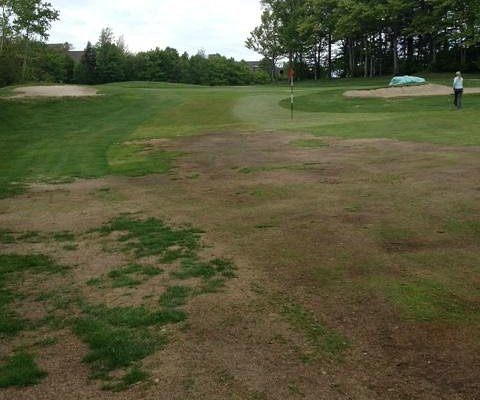 Dead fairway and temporary green on 18.