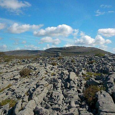 Limestone fields