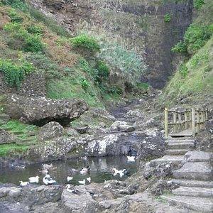 Cascata do Aveiro no lugar da Maia - Freguesia de Santo Espírito