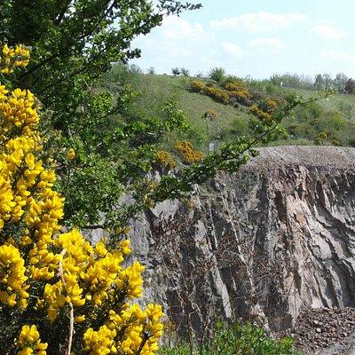Croft Hill and Quarry