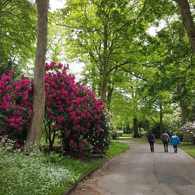 A selection of photos of the park in late May.