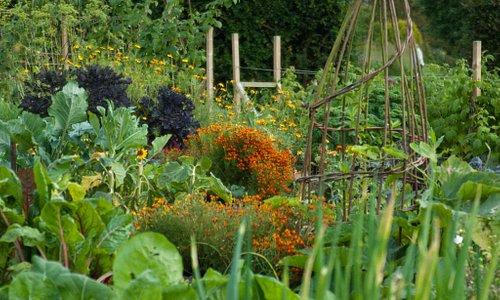 The Kitchen Garden at RHS Garden Harlow Carr
