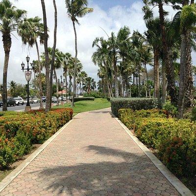 Pathway to Wilhelmina Park