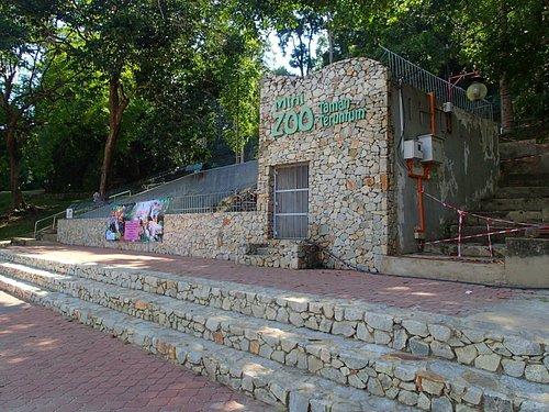 Mini Zoo Taman Teruntum Kuantan