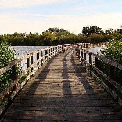 One of the boardwalks