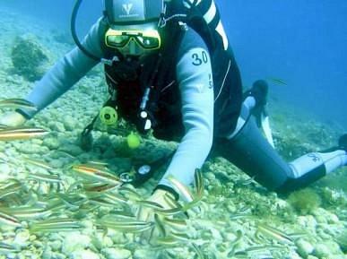 Diving on Girandella Beach