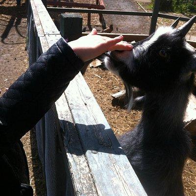 shawna makes a new friend!