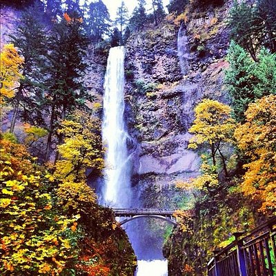See Multnomah Falls on our Mt. Hood Loop & Gorge Tours!