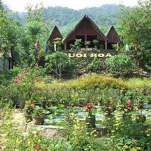 overview of Suoi Hoa