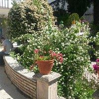 Detalle de un rincón del jardín en el piso medio.