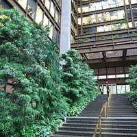 Ford Foundation Building 5