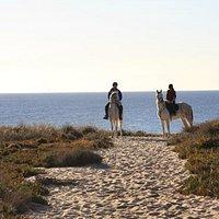 Passeio na Praia / Riding on the Beach