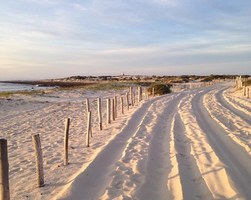 A walk into the dunes