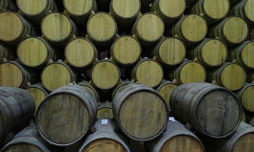 Tequila Barrels