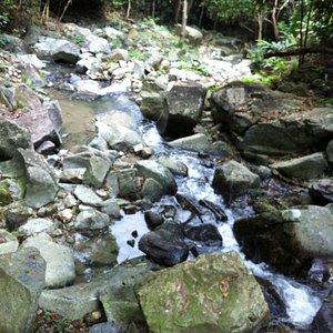 HK Trail stream