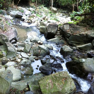 HK Trail stream
