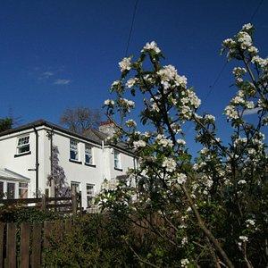 Arfryn House