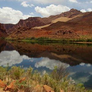 Little Colorado River at Dells Ranch