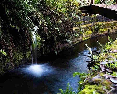 Flume #5 Intake, Kohala Ditch, Hawaii