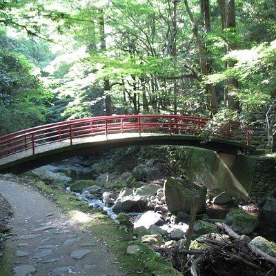 犬鳴山ハイキングコース3