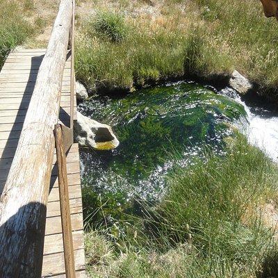 Arroyo de agua termal - Aguas Calientes - Vn. Domuyo