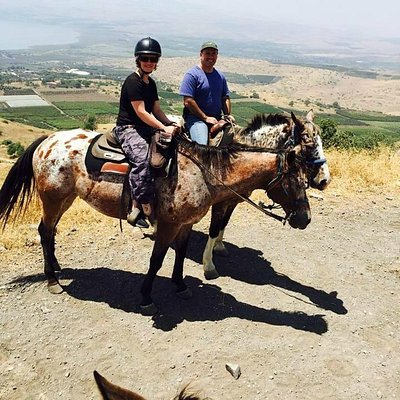 On our horse