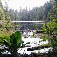 Mundy Lake