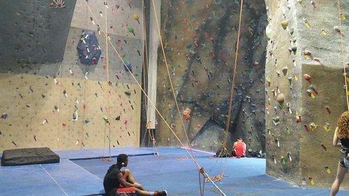 Tumblebees Ultimate Climbing Gym
