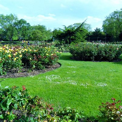 Rose garden at Southchurch Park