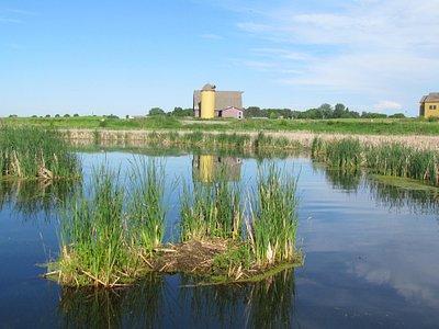 Morning on the Prairie Wetland Trail