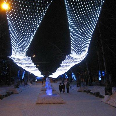 Новогодний парк вечером