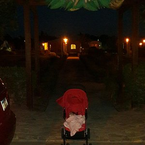 Cheeky Monkeys Playground and Amusement Center