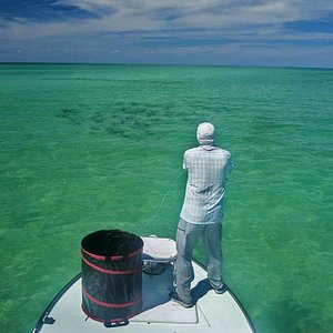 Charter fishing trips available!