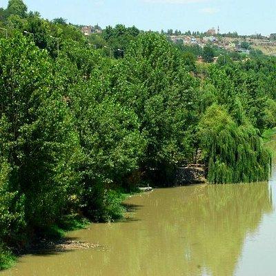 Dicle Nehri kenarı