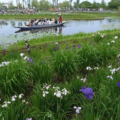 池を中心に構成された公園です。舟がいい感じです。