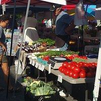 Bloomington Farmers Market!