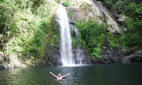 Swimming at the Cassowary Falls